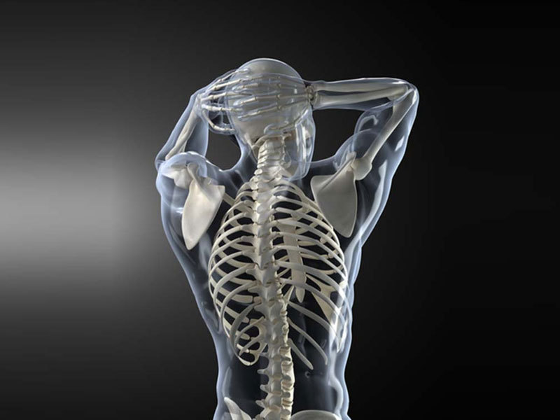 OXYGN4种迹象表明你的骨骼可能出了问题