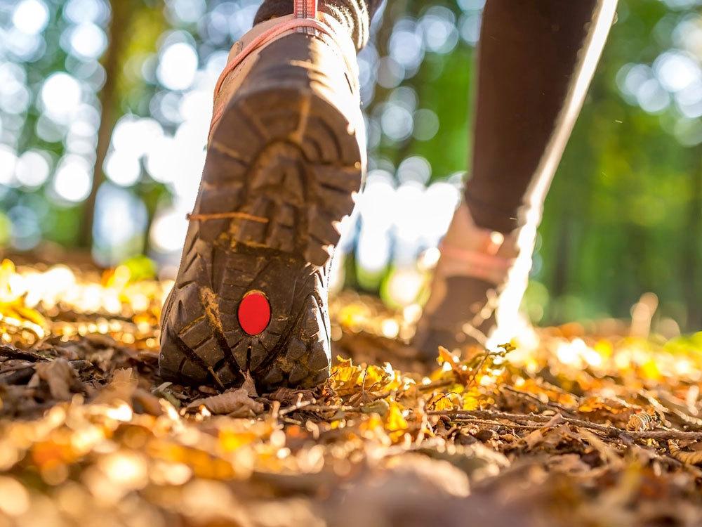 OXYGN如何增加散步的多样性并且不断减肥