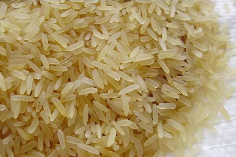 OXYGN为什么糙米、黑米和红米更有益于健康